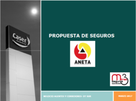 PROPUESTA DE SEGUROS ANETA