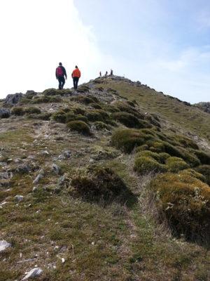 Montaña 2 - GUIA TA CORDOBA