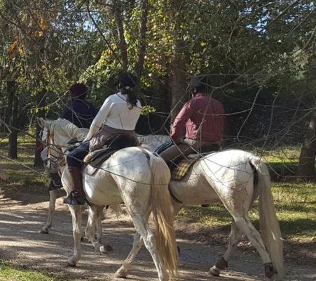 HÍPICA - turismo ecuestre - GUIA TA CORDOBA