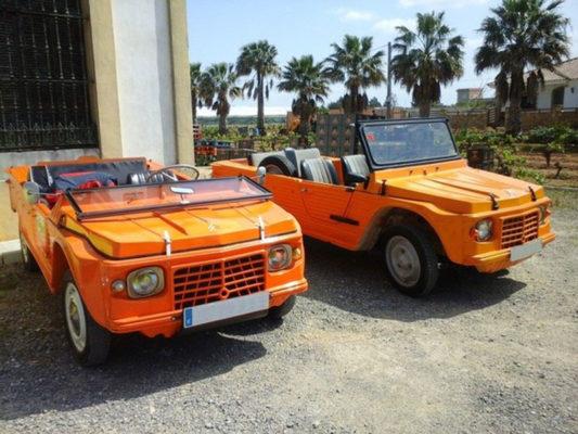 Dos coches clásicos de Pinapark