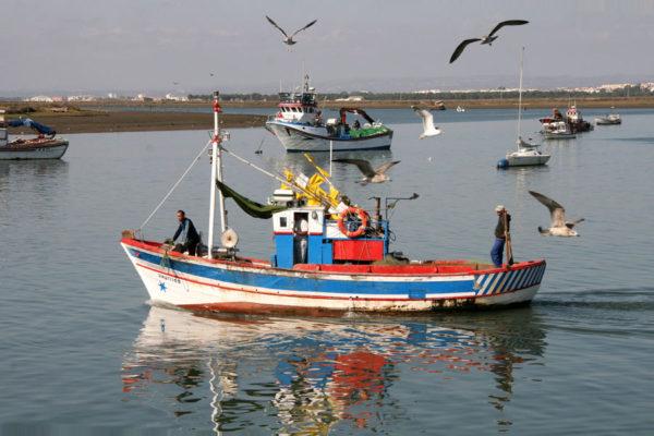 Barco en Corrales - Aljaraque